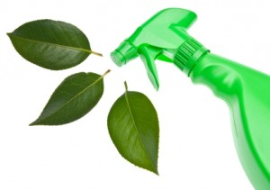 Enzyme Wizard Green Cleaning Products